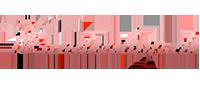 Wundershop Logo